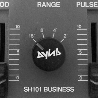 SH101 BUSINESS